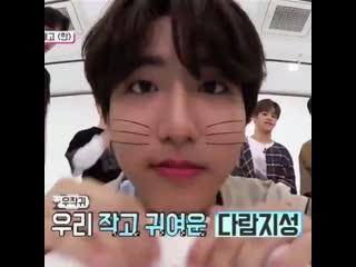 look at precious bunny boy