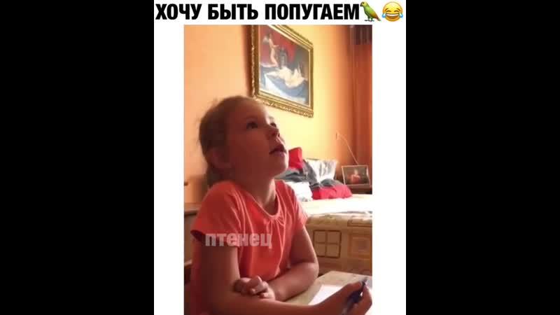 VIDEO-2019-09-05-21-59-40.mp4