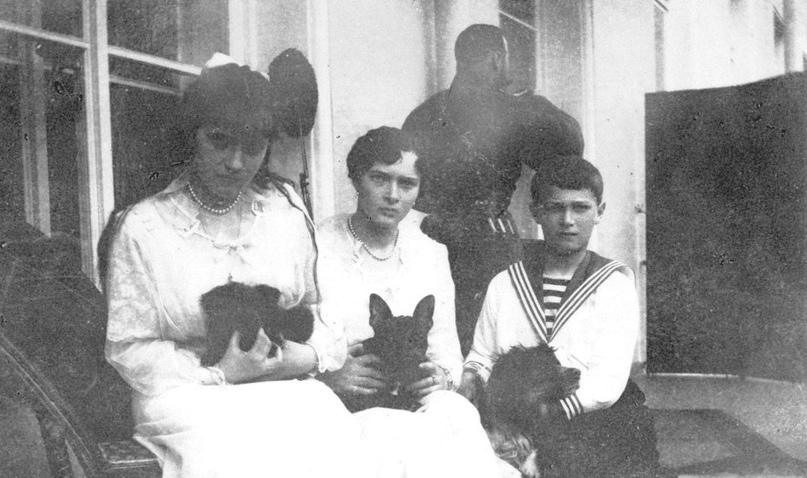 Что стало с питомцами расстрелянной царской семьи, изображение №1