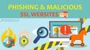 Как отличить опасный сайт от безопасного Поддельные сайты с SSL-сертификатом и самый лютый фишинг