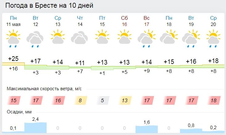Про вторник даже не хочется думать. Все о погоде в Бресте на этой неделе (будет прохладно)