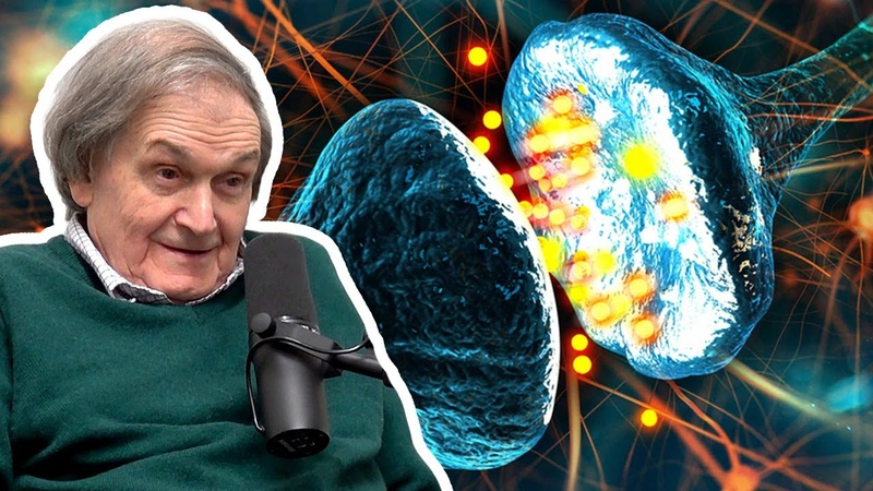 Consciousness is Not a Computation Roger Penrose AI Podcast Clips