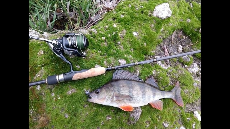 Окуни садисты или ловля на пассивные приманки Fishup Scaly Fat и Tanta.