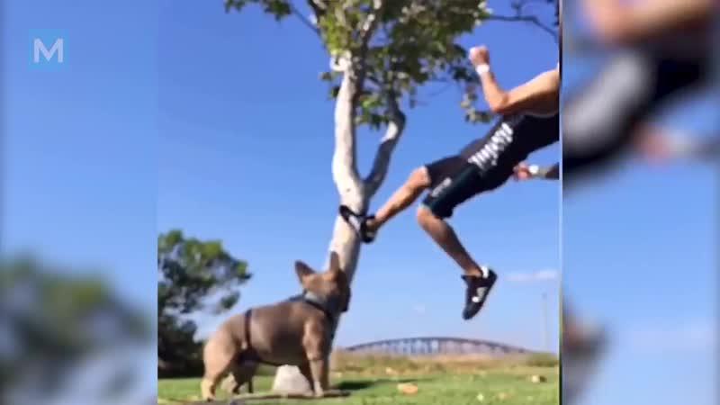 Tony Ferguson Training for Rafael Dos Anjos _ Muscle Madness
