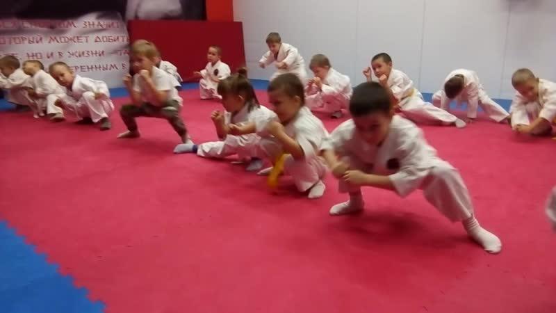 Комплексная тренировка единоборствами с детьми 4-5 лет. Ч.6.