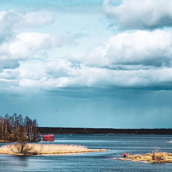 ресурсы золото, пляж лахтинский разлив фото тишинская звезды русского