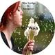 Max Vertigo, SevenEver - My Wish