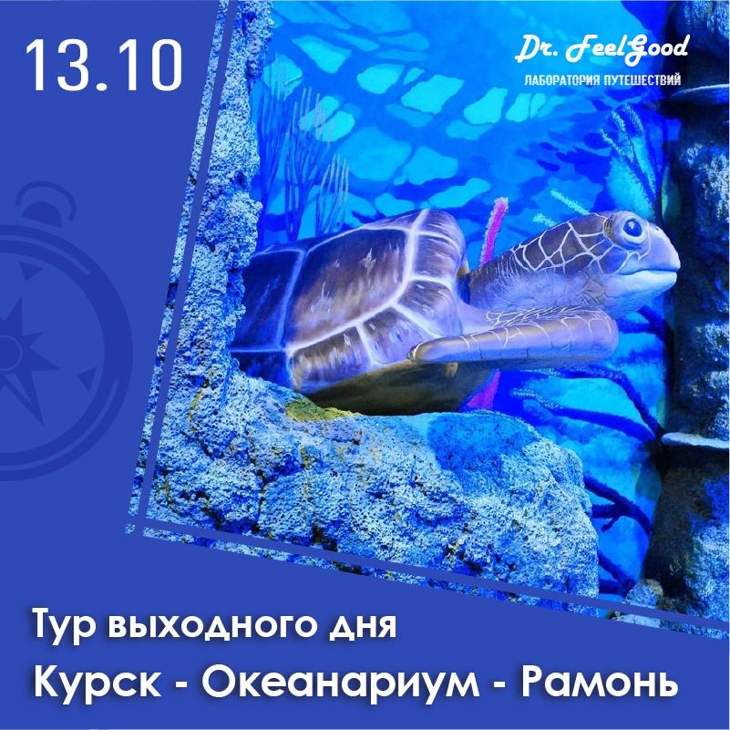 Афиша Воронеж ОКЕАНАРИУМ + Рамонский Замок 13.10 / из Курска