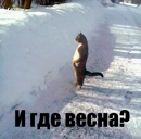 Фотоальбом Вадима Усова