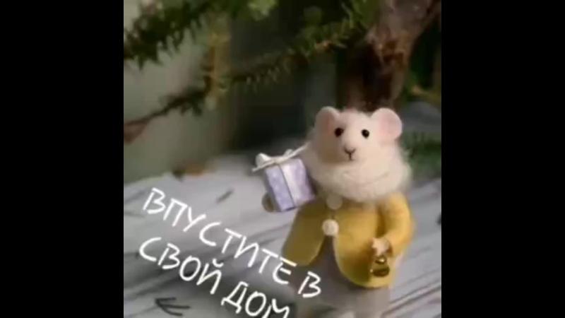 VID_20601201_024520_623.mp4