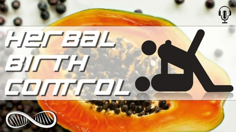 Herbal Birth Control - Natural contraceptive birth control options