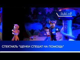 """Шоу """"Щенячий патруль"""" в Великих Луках"""