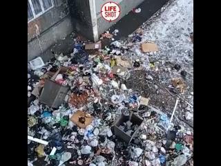 Двор в Красноярске превратился в помойку, как обитатели местной общаги стали выбрасывать мусор прямо в окно.