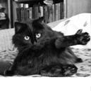 Личный фотоальбом Ирины Зерновой