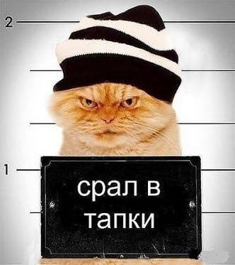 фото из альбома Андрея Антоненко №6