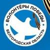 Волонтёры Победы. Белгородская область