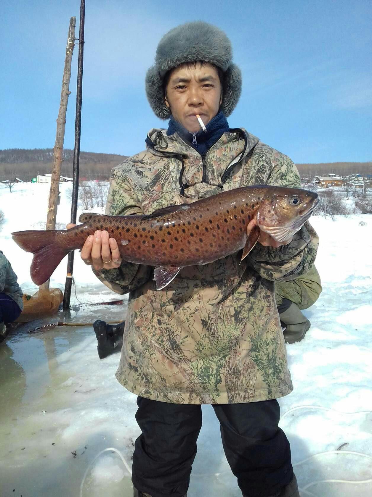 Анатолий, 37, Amursk