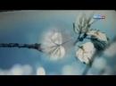 Будет светлым день 4-серия С.Бондаренко 2012г.