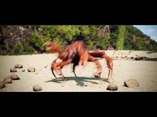 []Танцующий+краб++[вставка+для+видео+монтажа]+crab+