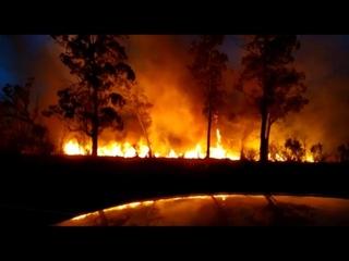 Огненная неделя: в Абхазии не могут потушить лесные пожары