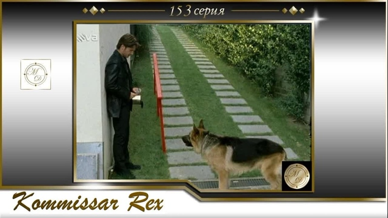 Komissar Rex 14x05 Комиссар Рекс 153 серия