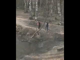 чудеса рф kullanıcısından video