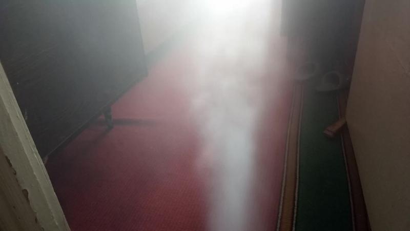 Уничтожение тараканов, клопов, блох, клещей, вшей, короеда холодным туманом