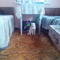 Павел Григорьев фото №19