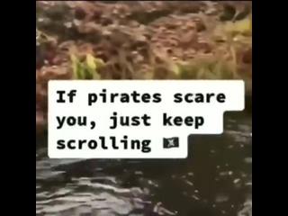 Pirate good boi