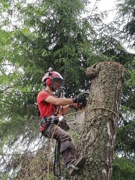 ⚡Пилим деревья любой сложности⚡8 (950) 908 99 90ww...