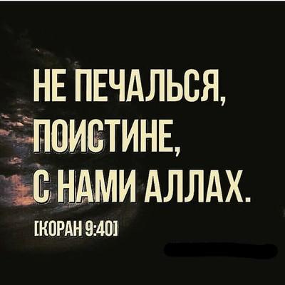 Каримов Мухаммад, Ноокат