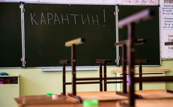 Почти 4 сотни классов в области закрыли на каранти...