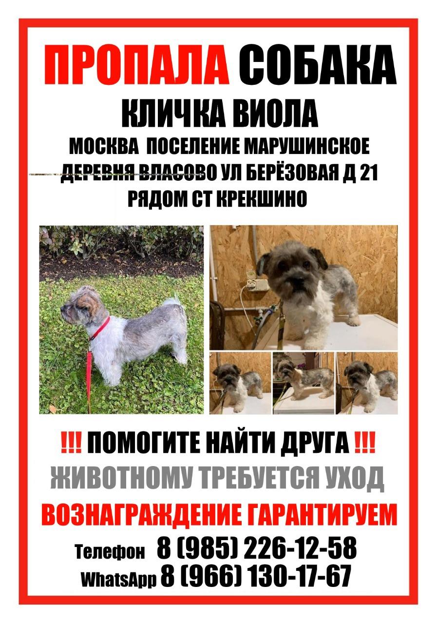 У москвичей появилась возможность сдать бесплатный экспресс-тест на COVID-19