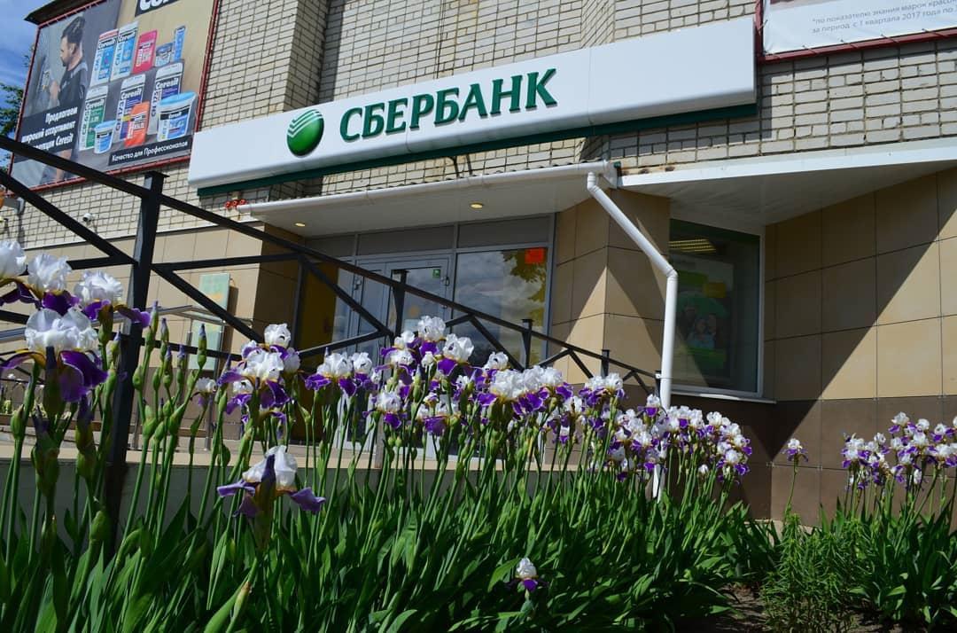 Цветы и сорняки: в центральной части Петровска прошёл рейд по благоустройству территорий предприятий и организаций