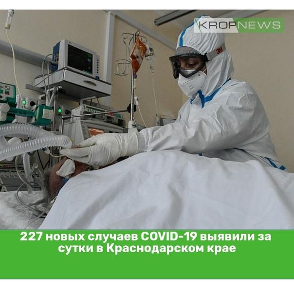227 новых случаев COVID-19 выявили за сутки в Крас...