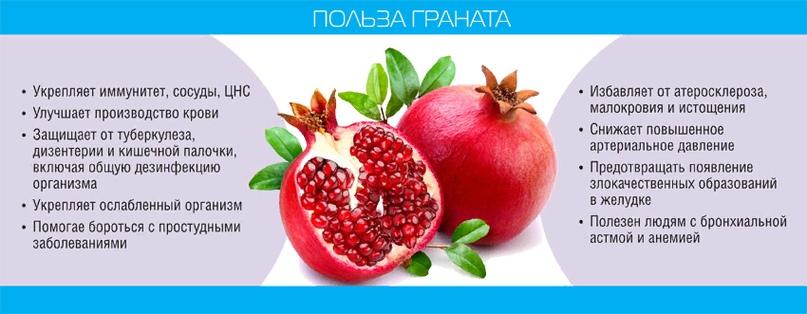 «Карфагенское» яблоко, изображение №8