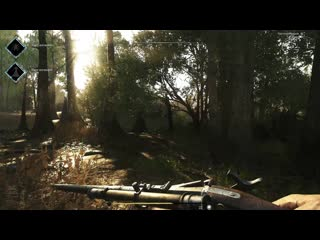 Hunt  Showdown rofl for Slava