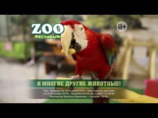 Zoo Фестиваль. Арзамас с