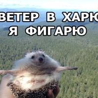 Фотография Вітали Штенфельда ВКонтакте