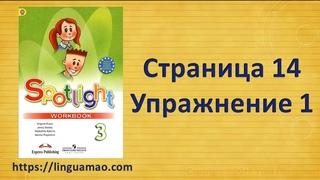 Spotlight 3 класс Workbook страница 14 номер 1 ГДЗ решебник