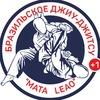 Международная школа джиу-джитсу Mata Leao |Пермь