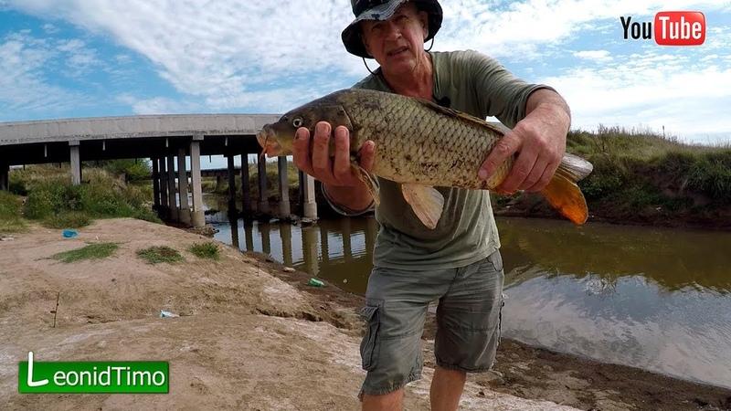 Даже не думал что там рыба водится Рыбалка на карпов 2020