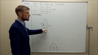 Kopné právo - 5. časť - Princípy kopného práva - SK dabing