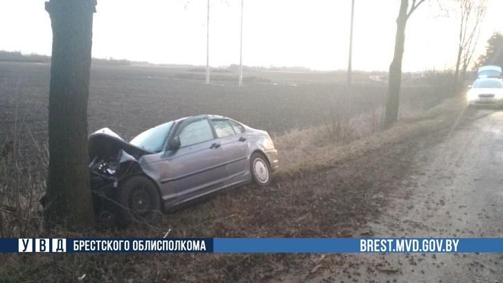 В Жабинковском районе автомобиль БМВ врезался в дерево